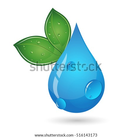 Water drop and green leaves eco symbol
