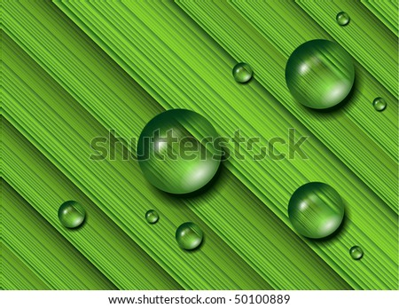 Water drops on fresh green grass, realistic vector illustration. - stock vector