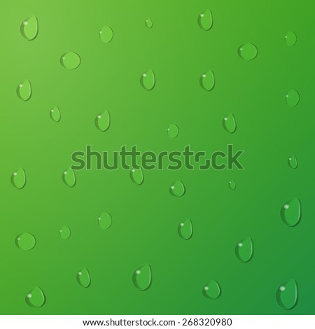 Water drops on green background. Vector illustration. - stock vector