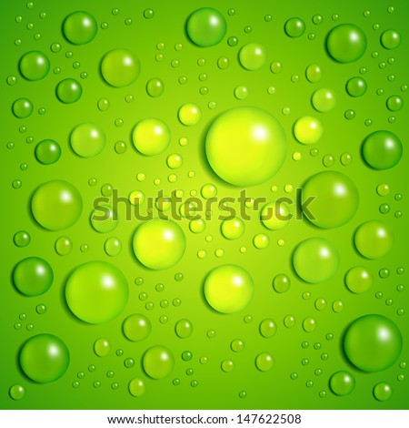 Water drops, vector background - stock vector