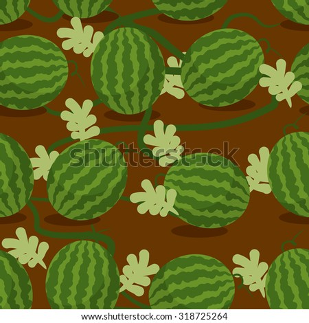 Water-melon plantation seamless pattern. Fruity vector background. Texture plants on bed. Plot sowed watermelons  - stock vector
