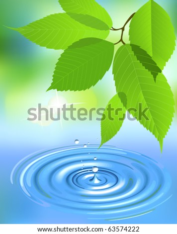 Water splash and leaves. All elements and textures are individual objects. Vector illustration scale to any size. - stock vector