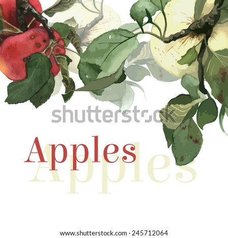 Watercolor apples with leaves. Background. Hand drawn - stock vector