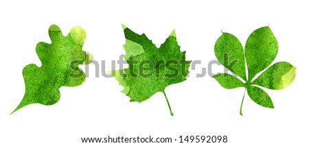 Watercolor autumn green-yellow leaves, collection of watercolor hand drawn leaves - stock vector