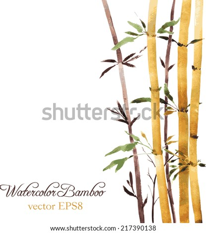 watercolor bamboo grove, hand drawn vector illustration
