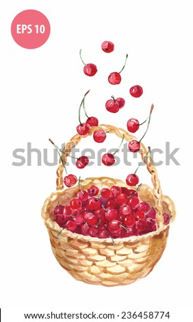 watercolor basket with cherry, painting berry - stock vector
