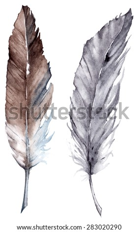 Watercolor black and gray feather set boho vector isolated - stock vector