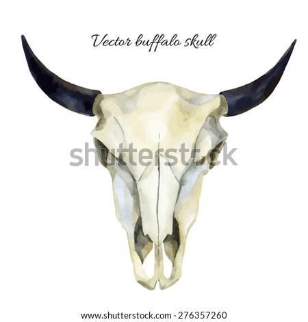 Buffalo Head Stock Images Royalty Free Images Amp Vectors