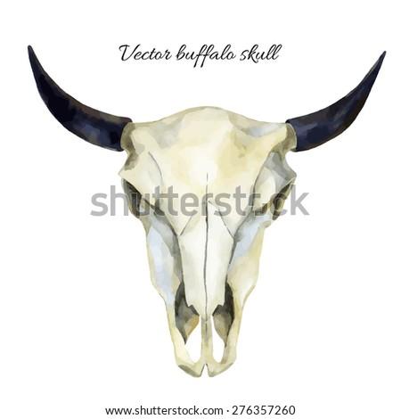 watercolor buffalo skull, hand painted vector illustration - stock vector