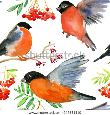 Watercolor bullfinch and ashberry. Seamless vector background. - stock vector