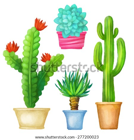 watercolor cacti set succulents home flowers houseplants in pots isolated on white background