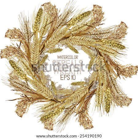 Watercolor cereal wreath. Rice, millet wheat, barley and rye. Vector frame - stock vector