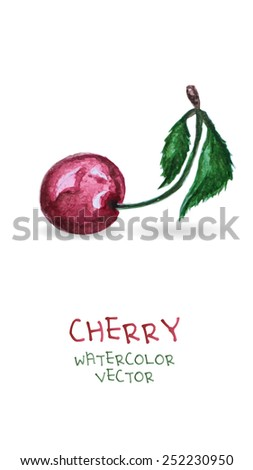 watercolor cherry  isolated on white background. Vector version - stock vector