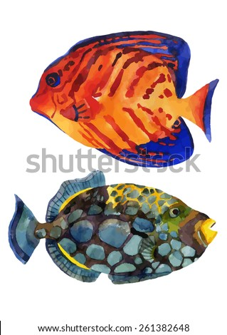 Watercolor chevron fish and clown triggerfish. Hand painted vector of tropical fish - stock vector