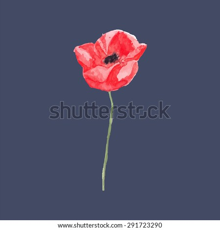 Watercolor floral decoration. Watercolor vector illustration of poppies