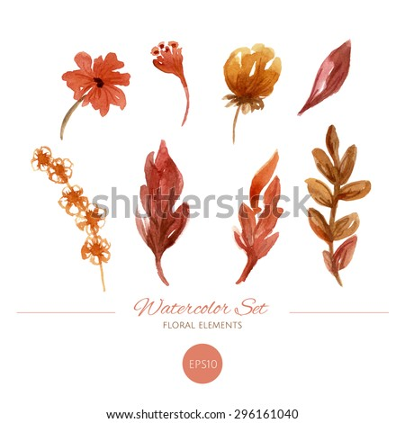Watercolor floral elements set. Autumn leaves and flowers. Hand drawn illustration.  - stock vector