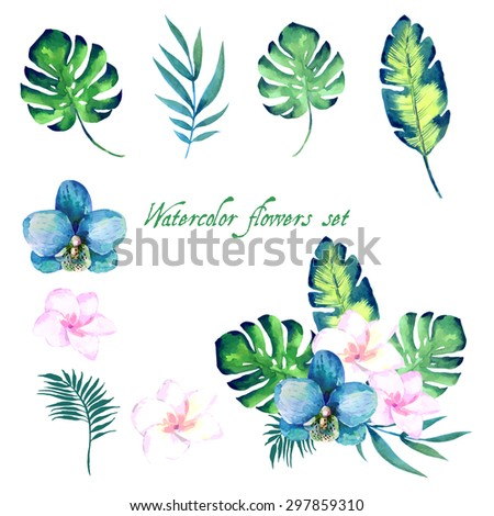 Watercolor floral set for your design. Vector illustration . - stock vector