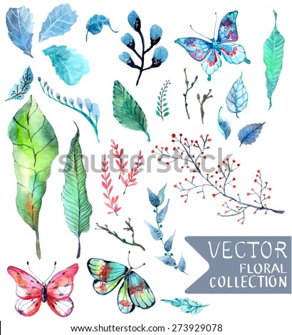 Watercolor flowers collection for different design with natural floral elements and butterfly, Vector - stock vector