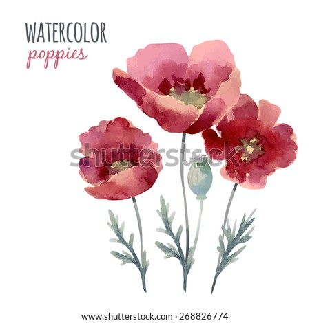 Watercolor flowers poppies can be used as Invitation card for weddings, birthdays and summer background. - stock vector
