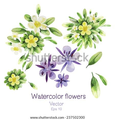 Watercolor flowers. Vector set - stock vector