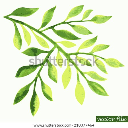 Watercolor green leaf design element. Vector illustration - stock vector