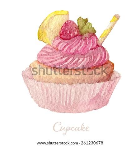 Watercolor Hand Drawn raspberry Cupcake. Vector Illustration, eps10  - stock vector