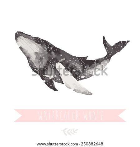 watercolor hand drawn whale on white background - stock vector