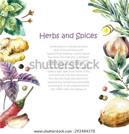 Watercolor herbs and spices frame. Hand painted food objects: mint, basil, rosemary, parsley, oregano, thyme, bay leaves, green onion, ginger, pepper, vanilla. Kitchen herbs and spices banner. - stock vector
