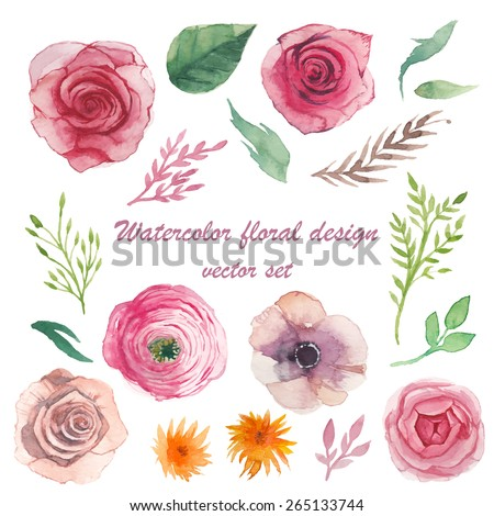 Watercolor herbs, ranunculus, anemone, roses elements set. Vintage leaves, flowers and branches. Vector hand drawn design illustration - stock vector