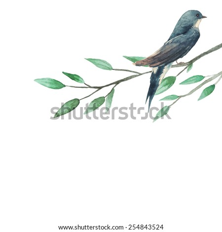 Watercolor illustration with swallow sitting on tree branch. Little artistic bird in vintage style. Hand painted vector illustration - stock vector