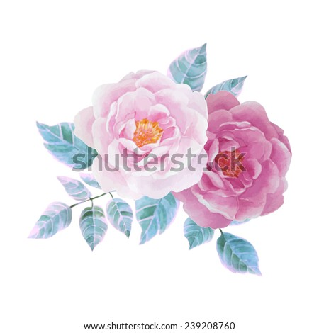 Watercolor illustrations of rose - stock vector