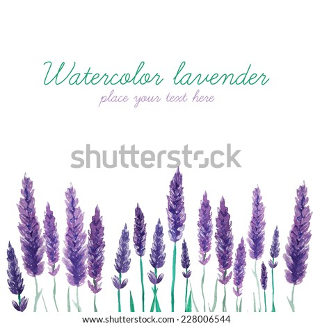 Watercolor lavender field border. Background with hand painted vintage plants. Vector illustration. - stock vector