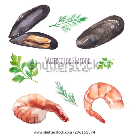 Watercolor mussels and shrimp set. Hand drawn mussel shells, shrimps, parsley, thyme, dill isolated on white background. Vector food and spices herbs illustrations - stock vector