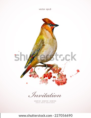 watercolor painting wild bird at nature. vector illustration. invitation card  - stock vector