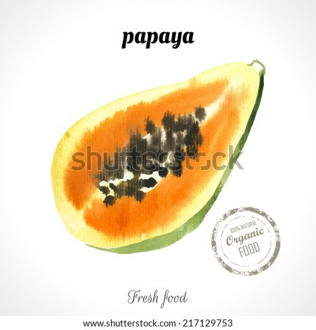 Watercolor  papaya. Provencal style. Recent watercolor paintings of organic food. Fresh exotic fruit.