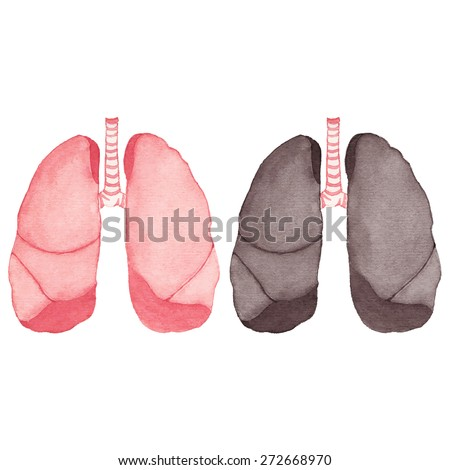 Watercolor realistic healthy and ill human lungs. Vector illustration. Real watercolor drawing. Traced painting - stock vector