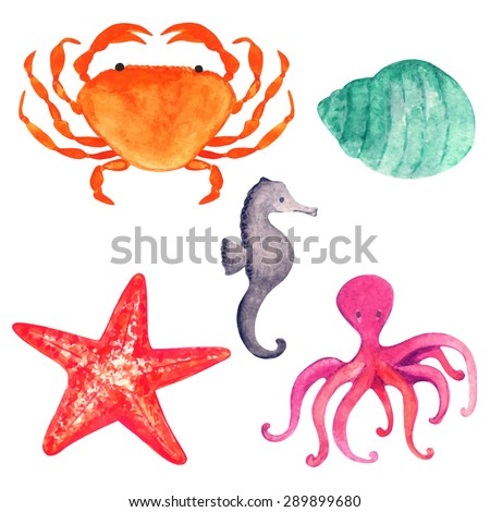 Watercolor sea animals cartoon set, crab, starfish, shell, octopus, sea horse closeup isolated on white background. Hand painting on paper - stock vector