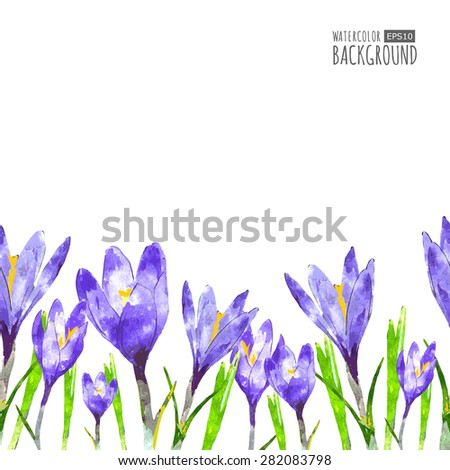 Watercolor seamless background with purple crocus flower and green leaves.  Vector floral illustration with place for text.