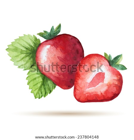 Watercolor strawberry isolated on white background. Vector illustration. - stock vector