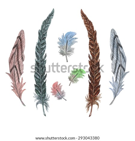 Watercolor Striped Feathers & Colorful Parrot Feathers, isolated on white background. Watercolor texture. Vector Elements for your design. Hand drawn illustration. Boho style. - stock vector