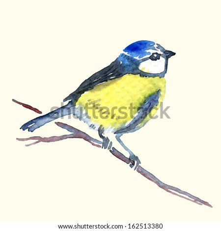 Watercolor-style vector illustration of Titmouse on white background. - stock vector