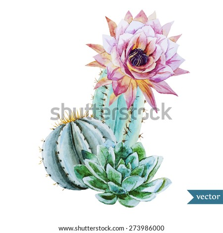 watercolor tropical drawing with cactus - stock vector