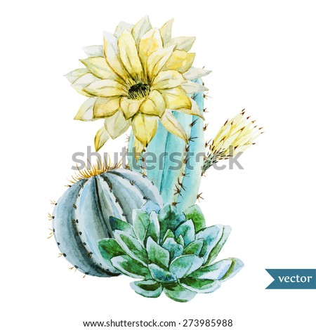 watercolor tropical vector drawing with cactus - stock vector
