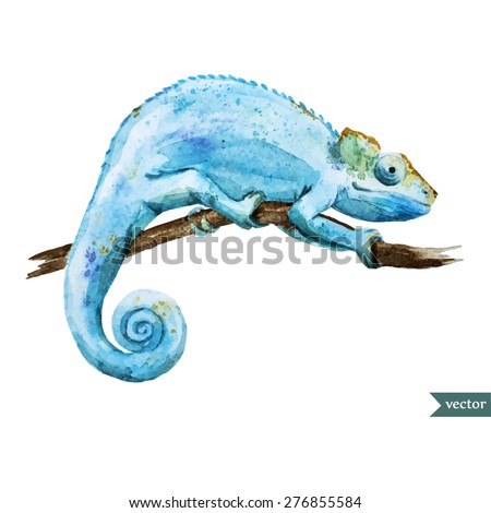 watercolor vector drawing blue chameleon - stock vector