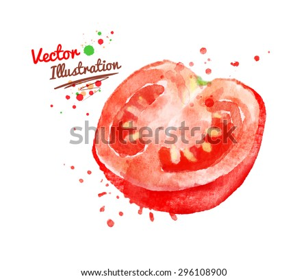Watercolor vector drawing of half of tomato with paint splashes.