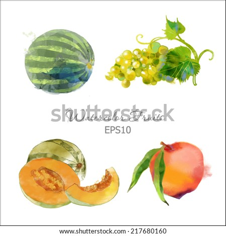Watercolor vector fruits set of watermelon, peach, grape and melon - stock vector