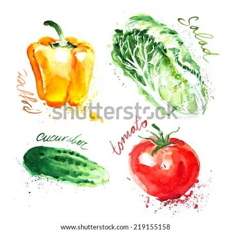 watercolor vector vegetables set  - stock vector