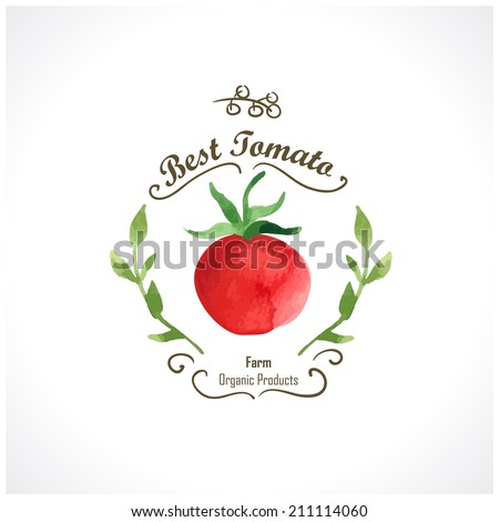Watercolor vegetables. Tomatoes. Provencal style. Recent watercolor paintings of organic food. Etiquette with tomato - stock vector