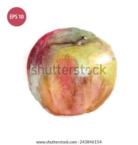 watercolor vegetarian food, paintinf apple - stock vector