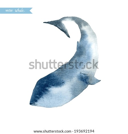 Watercolor whale. Vector illustration. - stock vector